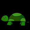 Turtle's Photo